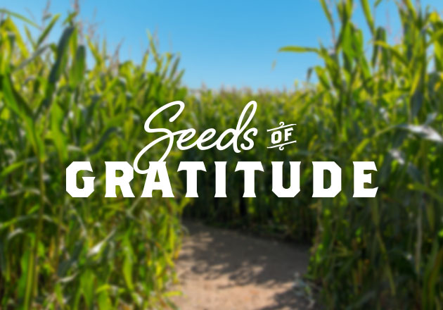 Guests Plant Seeds of Gratitude