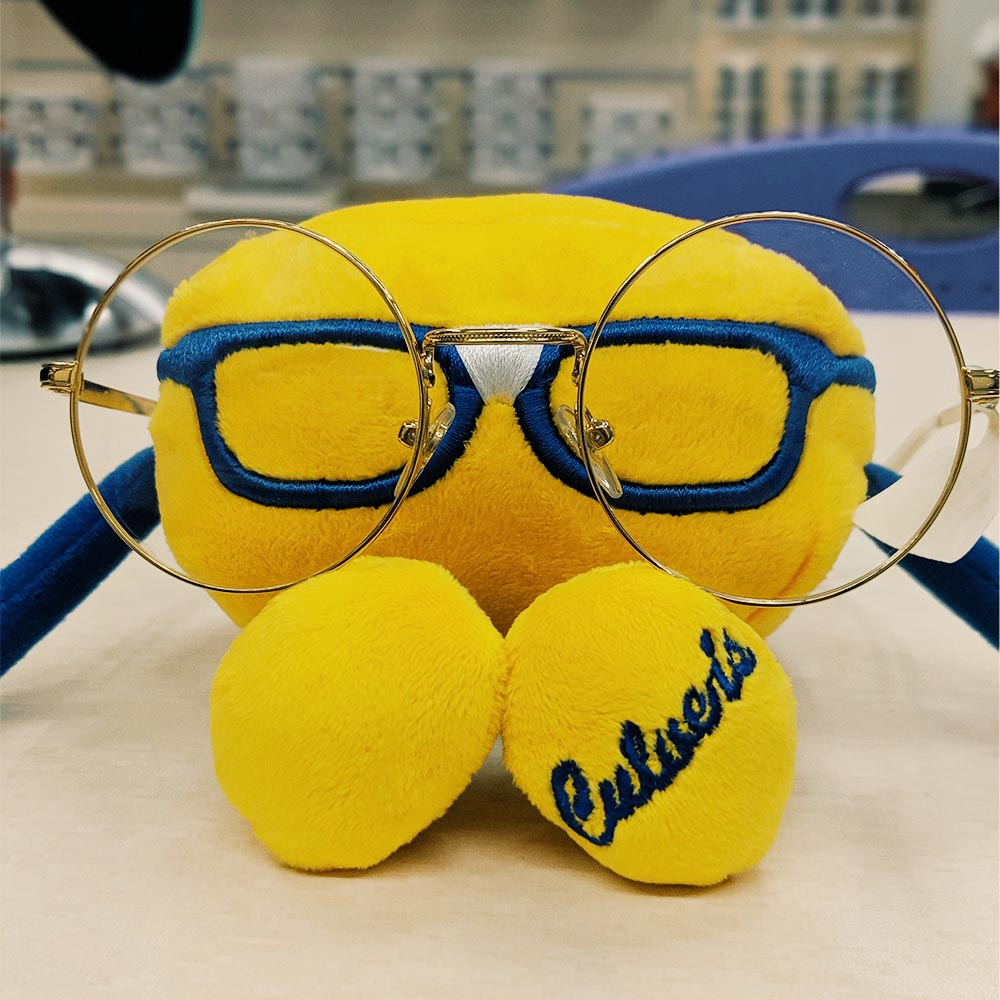 View Post: Every Curd Nerd Needs the Perfect Glasses