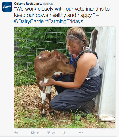 A photo of Dairy Carrie working on the farm.