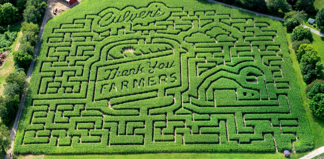 Kalamazoo Corn Maze Says Thanks to Farmers