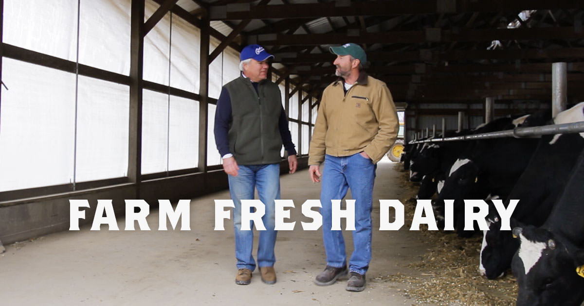 State Farm Perks >> Farm-Fresh Dairy: Nothing but the Finest