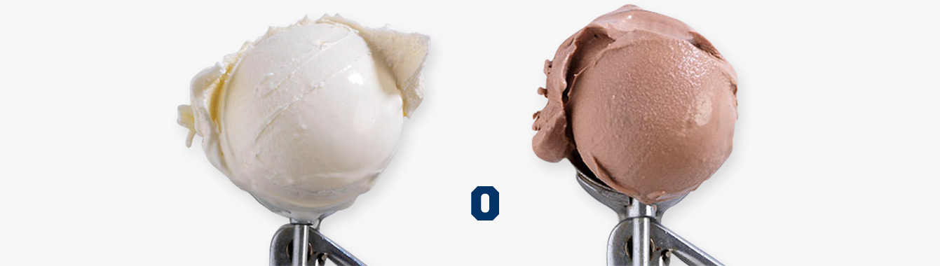 A scoop of vanilla custard and a scoop of chocolate custard.