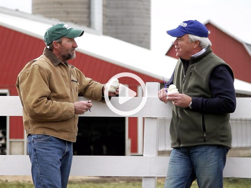 Farm Fresh Dairy