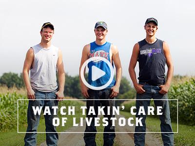 Watch Takin' Care of Livestock