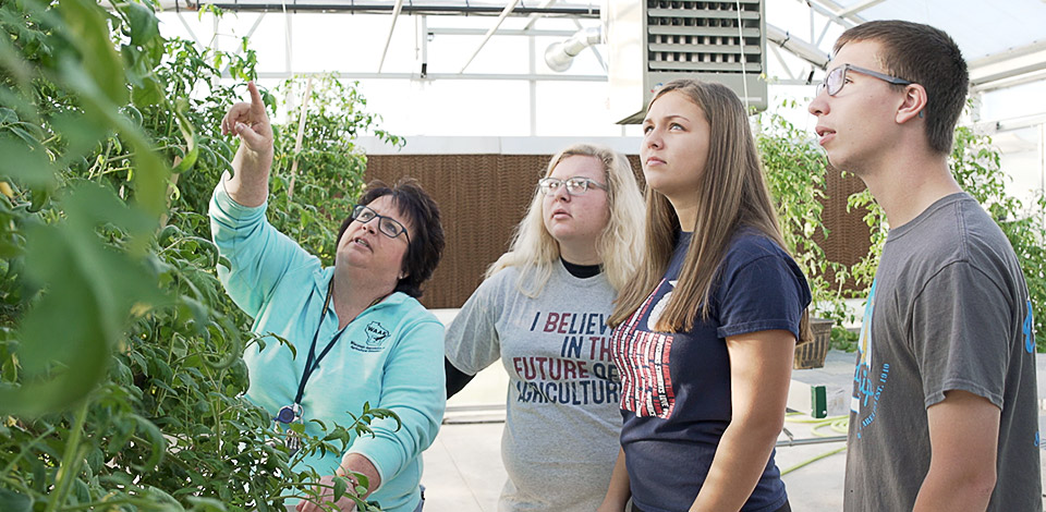 Waupun FFA advisor and members stand in a greenhouse inspecting tomato plants
