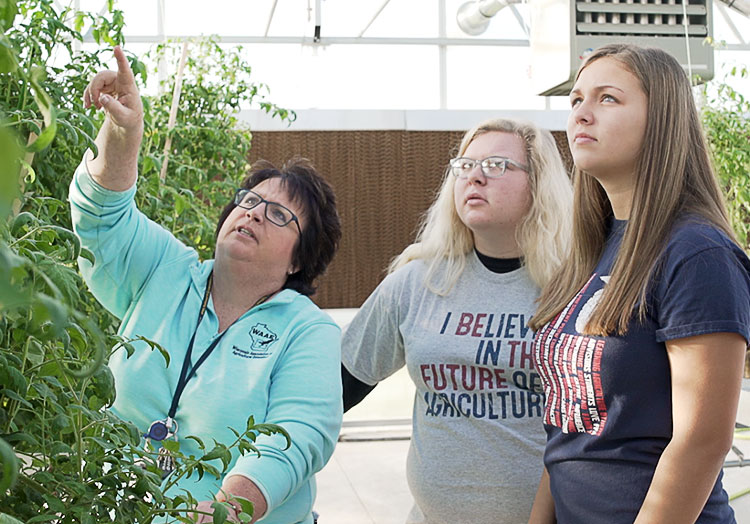 Link to story: Waupun FFA: Growing Tomorrow's Leaders. Waupun FFA advisor and members stand in a greenhouse inspecting tomato plants