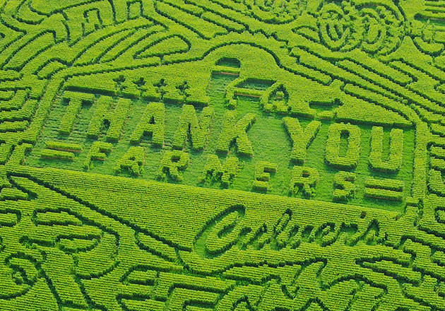 Our 2017 Corn Mazes